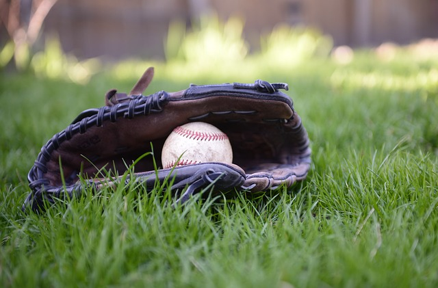 Want Information About Baseball